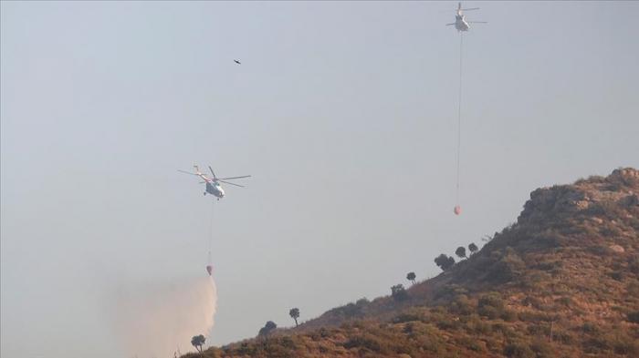 174 feux de forêts déclarés en Turquie ces 8 derniers jours, 160 sont maitrisés
