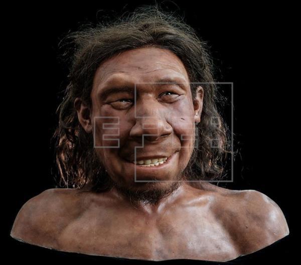 Reconstruido en Países Bajos el rostro del primer neandertal neerlandés