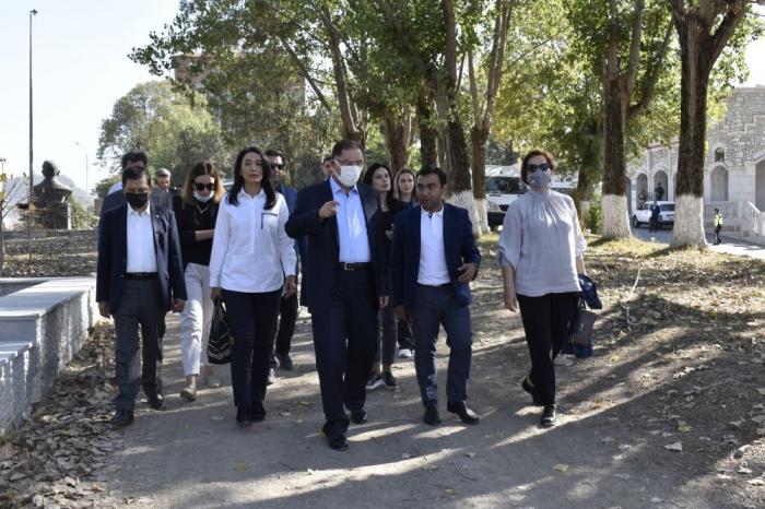 OIC delegation witnesses traces of Armenian vandalism in Azerbaijan