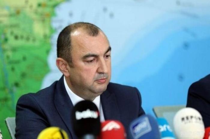 Viceministro:   Los armenios talaron y destruyeron los antiguos plátanos orientales en el distrito de Zangilan
