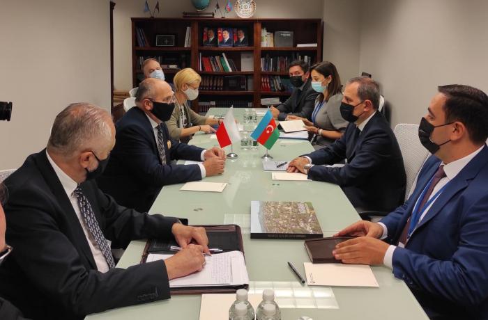 Azerbaijani and Polish FMs discussed strategic partnership