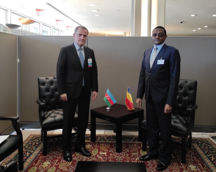 Azerbaijani FM meets with colleagues from Chad and Venezuela