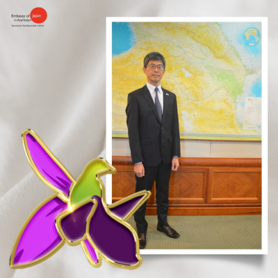 Japanese Ambassador pays tribute to memories of Martyrs of Patriotic War