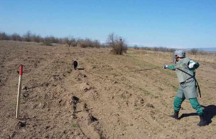 ANAMA -  In den befreiten Gebieten wurden weitere 78 Minen gefunden
