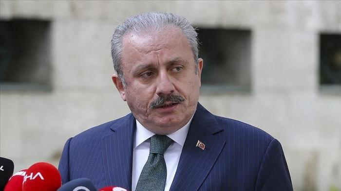 Turkey always stands by Azerbaijan, says parl't speaker