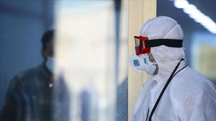 Coronavirus cases worldwide drop 10% in past week - WHO