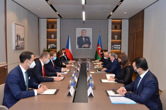 وزير الخارجية يلتقي بنظيره التشيكي