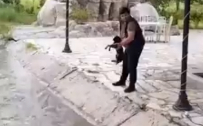 İti su kanalına atan məsuliyyətə cəlb olunub