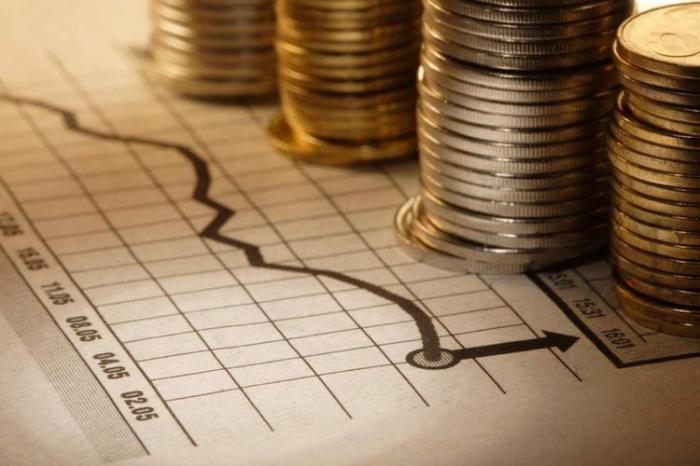 Xarici investisiyalar azalıb