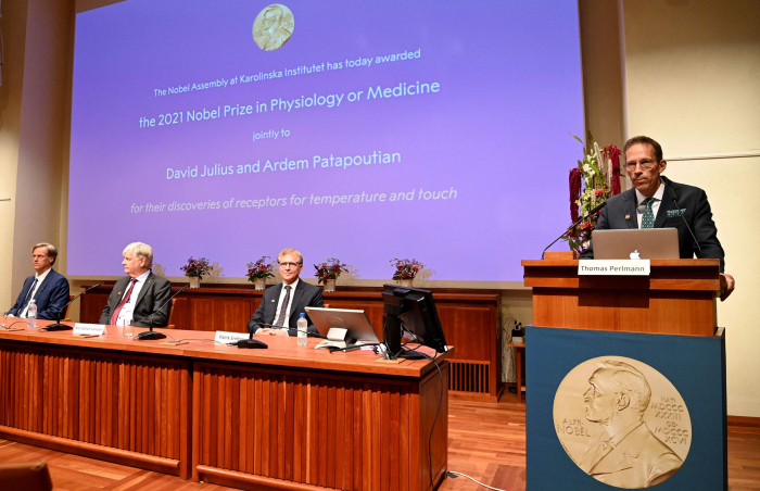 Nobel Prize in Medicine honors US duo for discovery of receptors