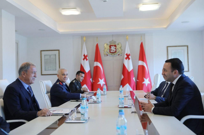 Georgian PM meets with Turkey