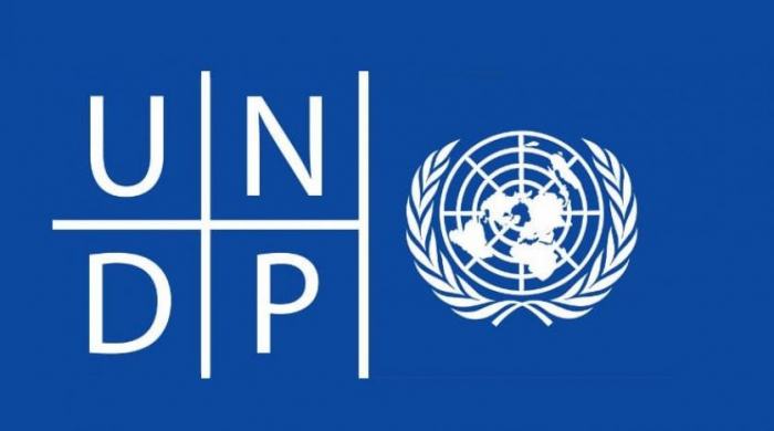 UNDP says there