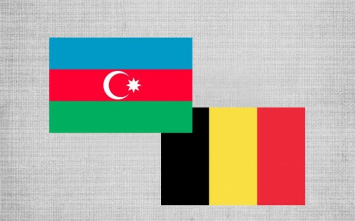 Aserbaidschan und Belgien erwägen Perspektiven für die Entwicklung einer Genossenschaft im Sektor der erneuerbaren Energien