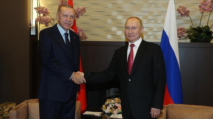 Turkish, Russian presidents discuss regional issues in phone call