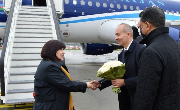 Azerbaijani parliamentary delegation starts their official visit to Slovakia
