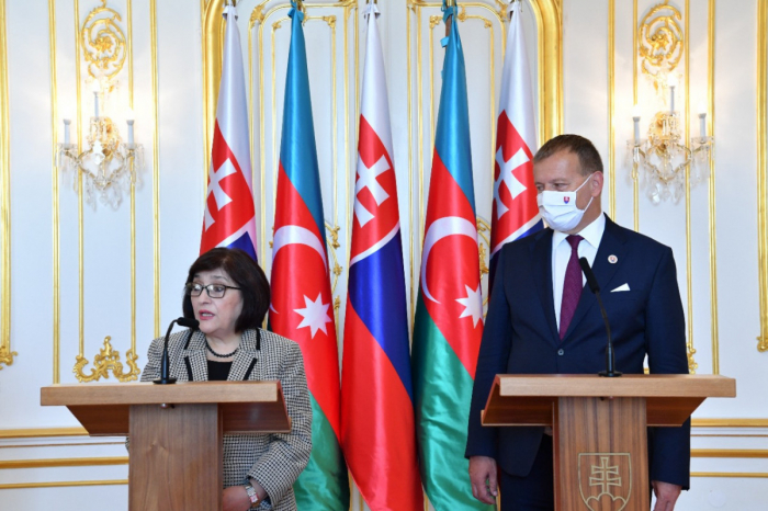 Speakers of Azerbaijani, Slovakian parliaments hold joint briefing