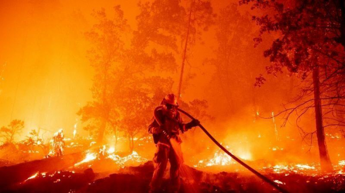 Local emergency declared as California battles devastating wildfires -   NO COMMENT