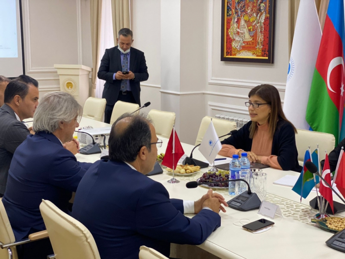 International Turkic Culture and Heritage Foundation expands relations with Turkey