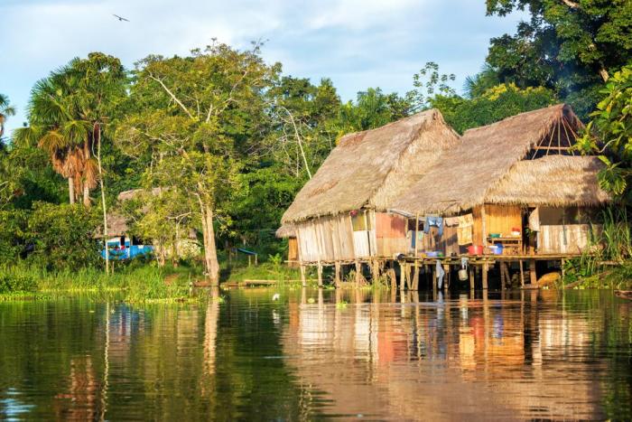 Amazon meşələrində rekord quraqlıq:   Dünyada kofe böhranı yarana bilər