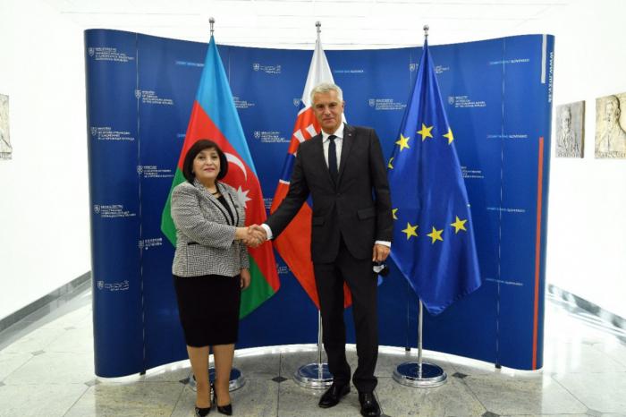 Sahiba Gafarova a rencontré le ministre slovaque des Affaires étrangères