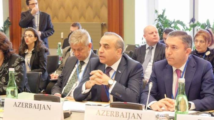 Azay Quliyev Prezidentin İrəvanla bağlı fikirlərini ATƏT PA-da əsaslandırdı