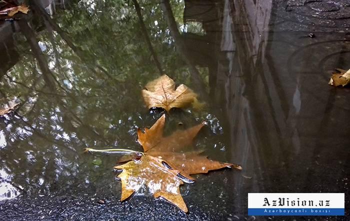 Bu günün hava proqnozu: Duman, yağış gözlənilir