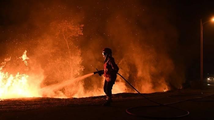 Portugal: Dimite ministra de Interior por la gestión de los incendios que suman más de 100 muerto