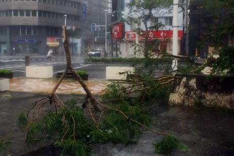 Typhoon Vongfong leaves two dead, nearly 100 injured in Japan - VIDEO