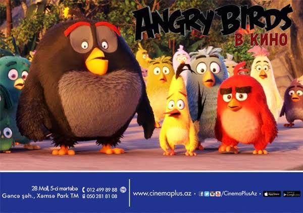 """""""Angry Birds kinoda"""" Cinemaplus-da - TREYLER"""