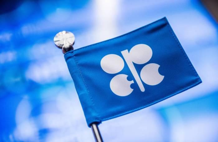 Energetika naziri OPEC-in iclasına gedir