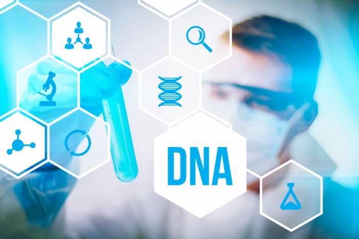 Le Koweït renonce à la loi sur les tests ADN obligatoires