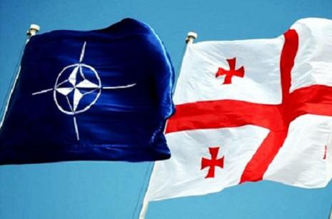 U.S. senators propose to accept Georgia into NATO