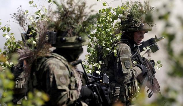 Steinmeier criticó las maniobras de la OTAN en Europa del Este