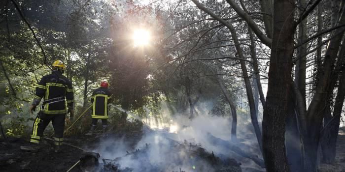 Tempête Eléanor : trois blessés dans les incendies en Corse