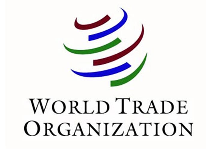 WTO predictscoronavirus downturn to be worse than 2008
