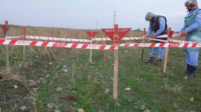 Ağdamda Ermənistan istehsalı olan mina tapılıb - FOTO