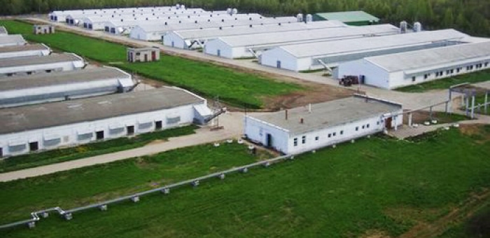Azerbaijan allocates over 1B AZN to build agricultural parks