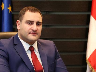 Gürcüstanın daxili işlər naziri Azərbaycan səfiri ilə görüşüb