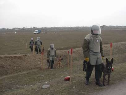 Demining ops launched due to weapons storage blast in Khizi to be completed by year-end - ANAMA