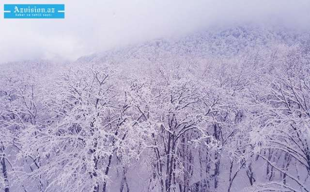 Şahdağa 11 sm qar yağıb - Faktiki hava