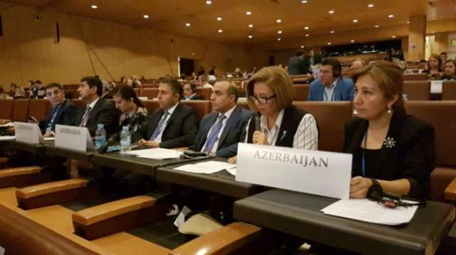 Azerbaijani vice speaker urges Armenian MPs to refrain from making provocative statements