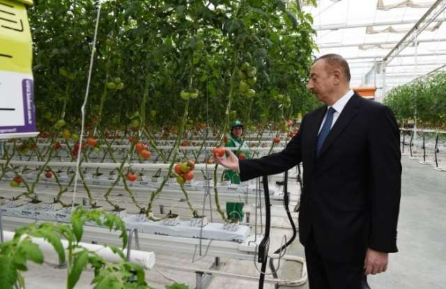 """President Ilham Aliyev views works carried out in """"Baku Agropark"""" in Zira settlement"""