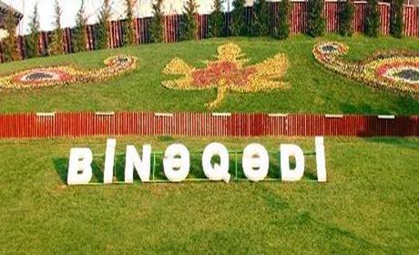 Image result for binəqədi