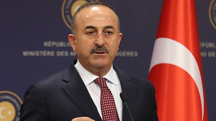 Operation Olive Branchto be completed byMay, says Turkish FM