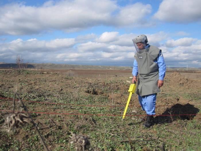 Cocuq Mərcanlıda 51600 kv.m. ərazi təmizlənib