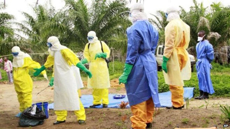 537 Ebola deaths reported in DRC: UN