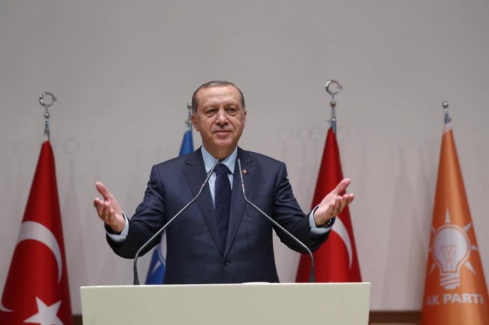 TANAP is of great importance for Europe's energy security - Erdogan