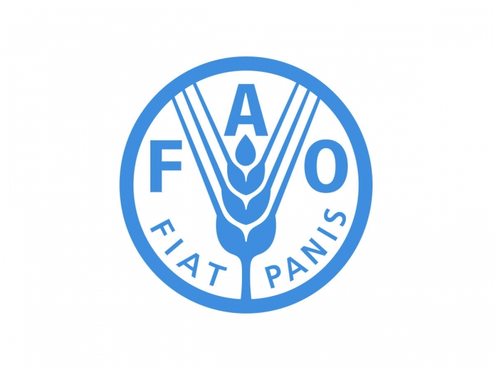 FAO to continue supporting development of beekeeping in Azerbaijan