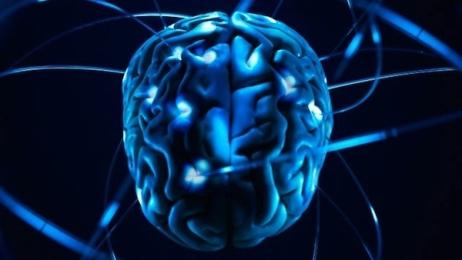Kompüter oyunları beyni inkişaf etdirir – VİDEO