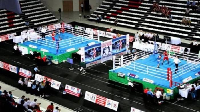Daha iki boksçumuz Avropa çempionatının yarımfinalında